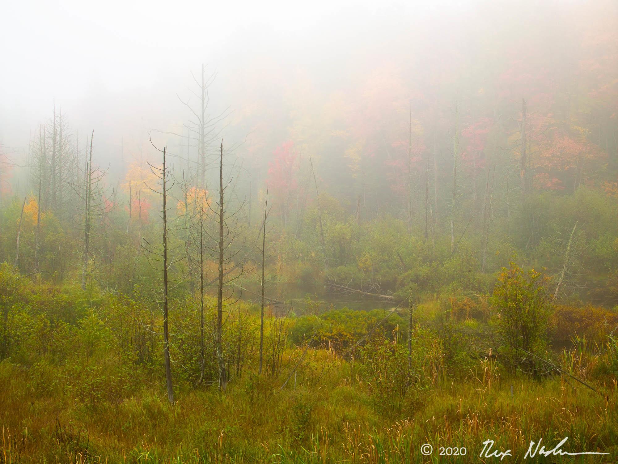 Autumn Pond - Michigan Upper Peninsula