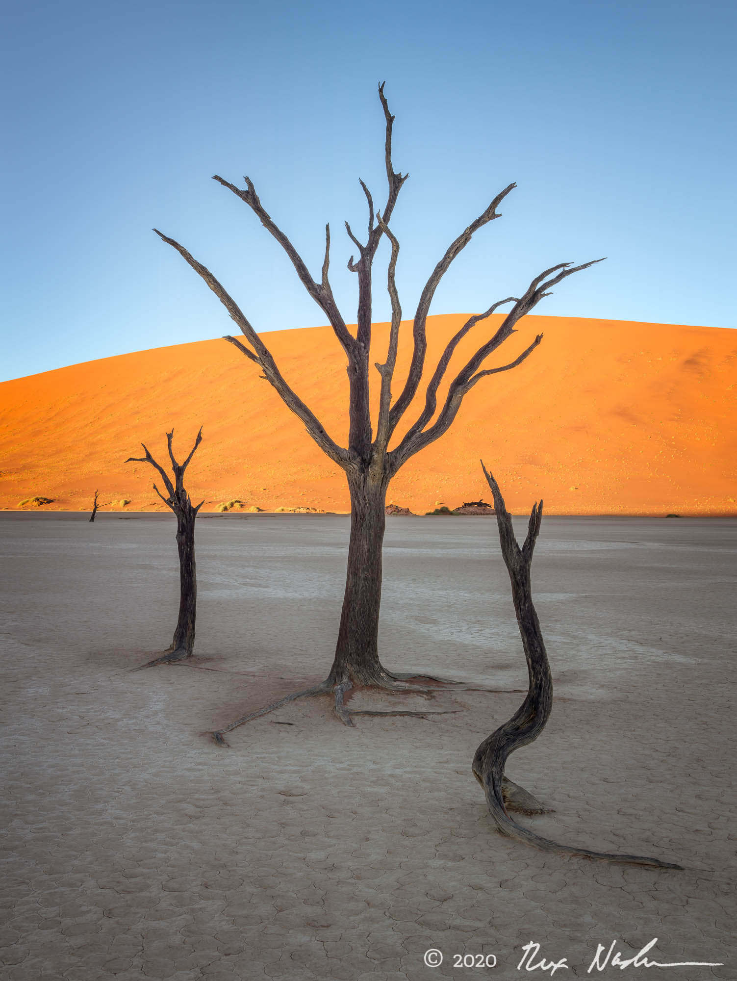 Entreating the Sun - Namibia, Southern Africa