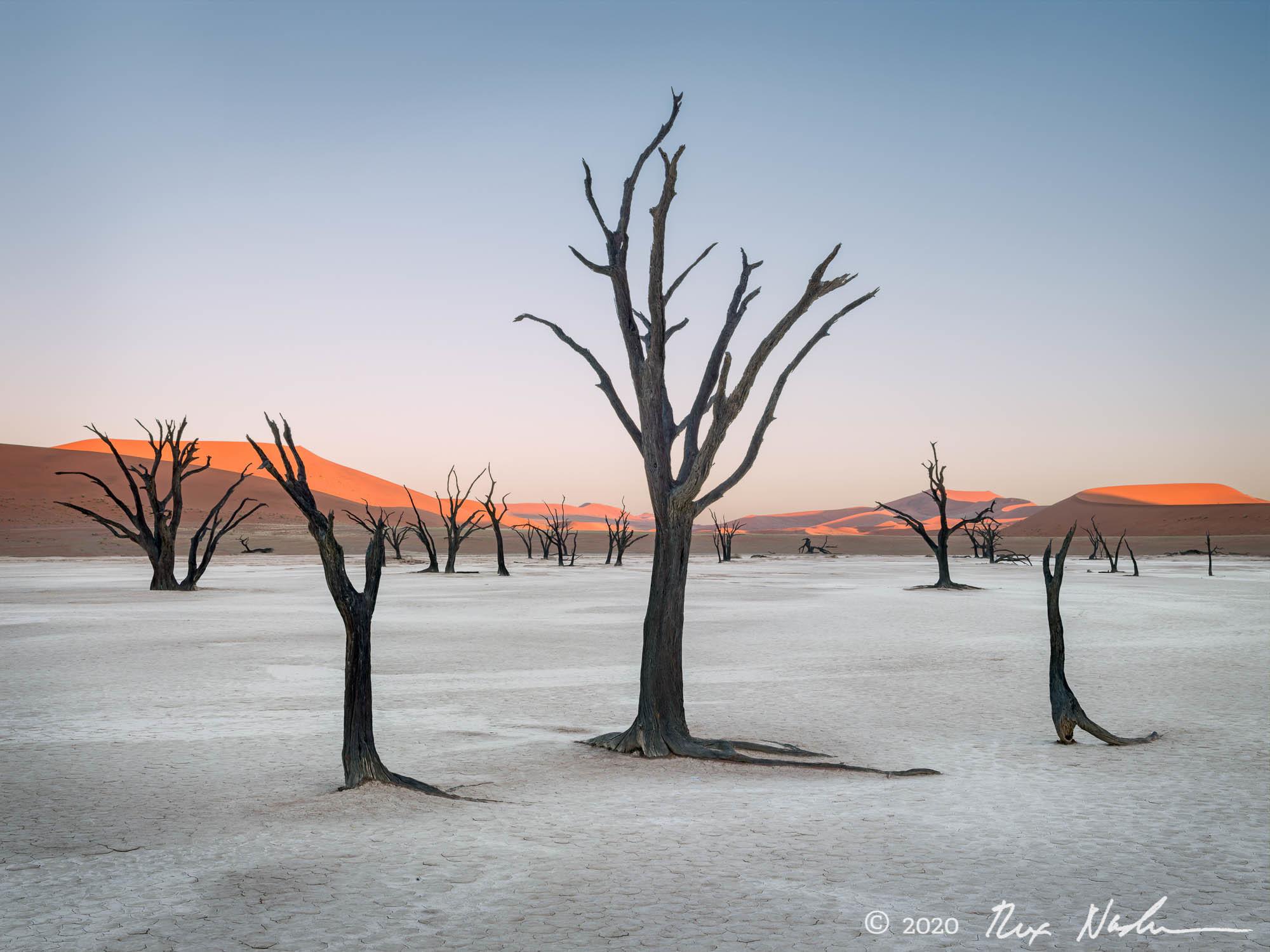 The Saga Begins - Namibia, Southern Africa