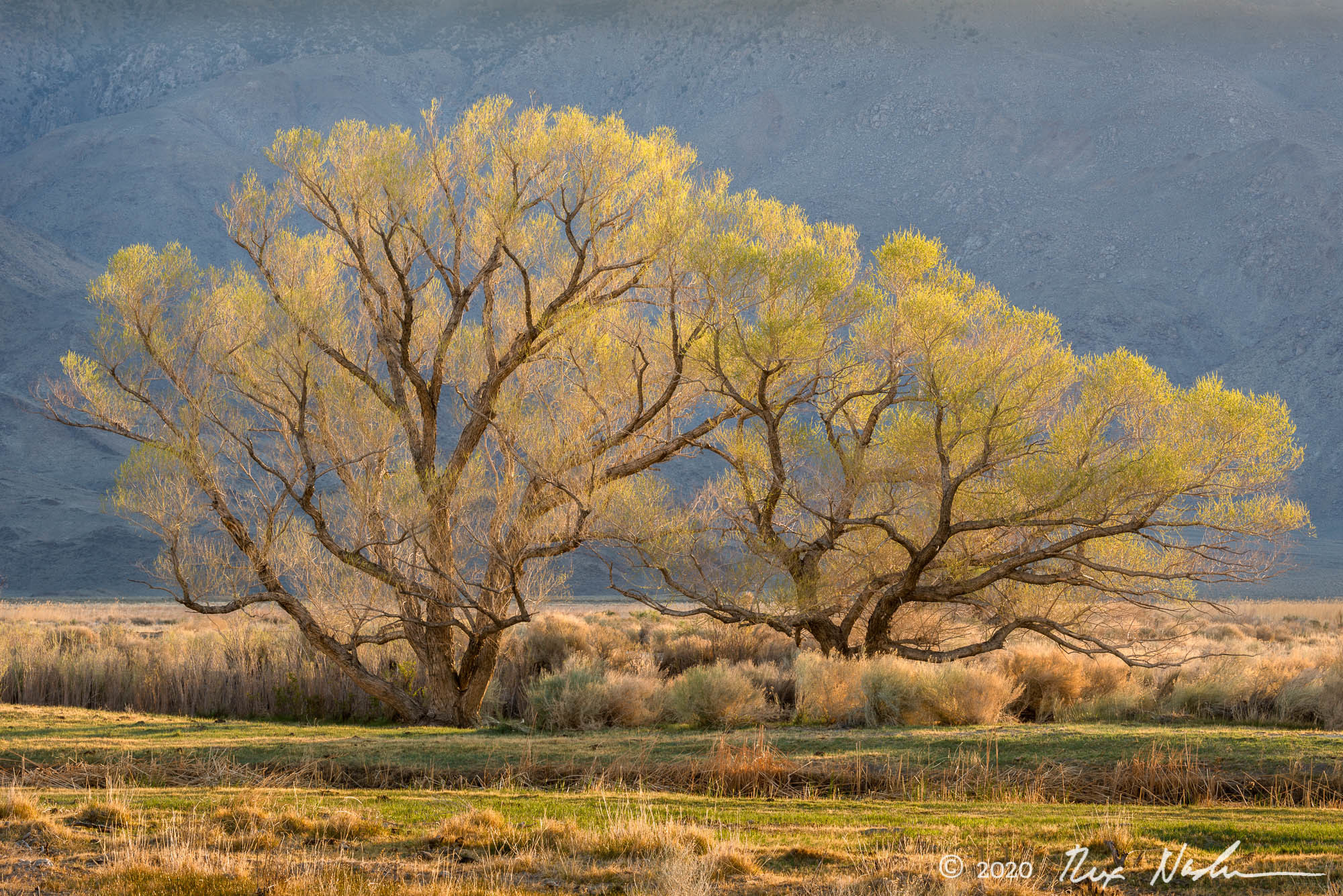 The West - Owens Valley