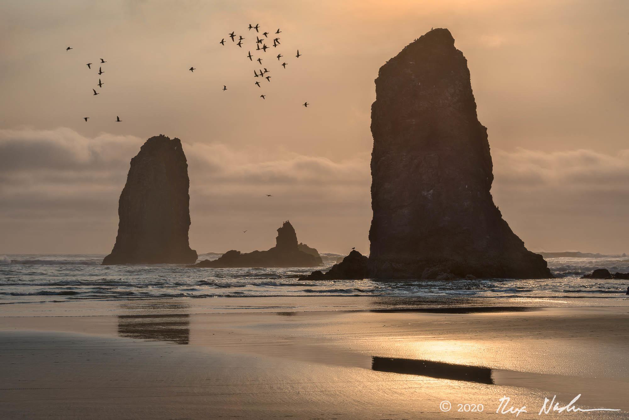 Community - Oregon Coast