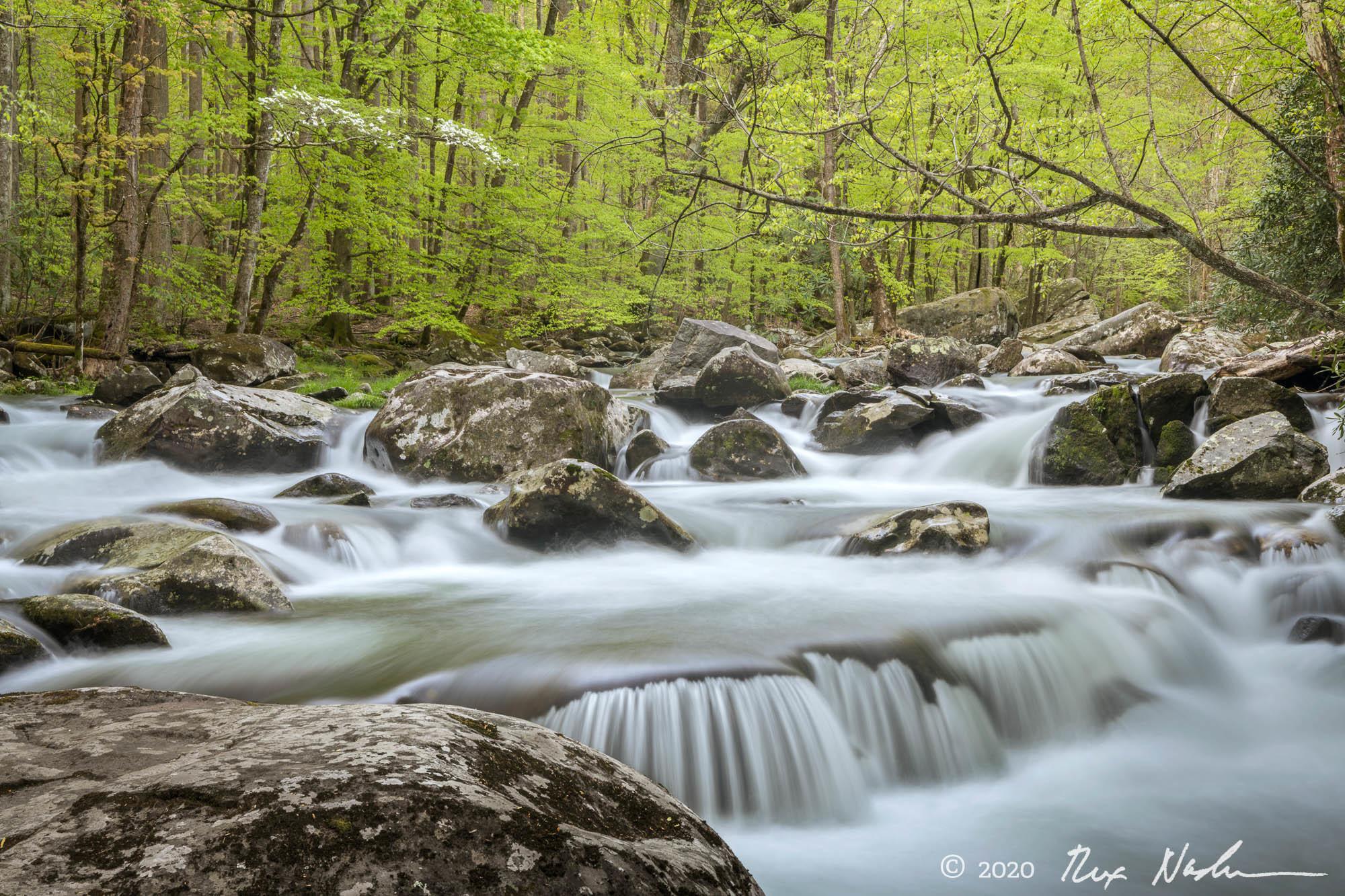 Pouroff - Great Smoky Mountains NP
