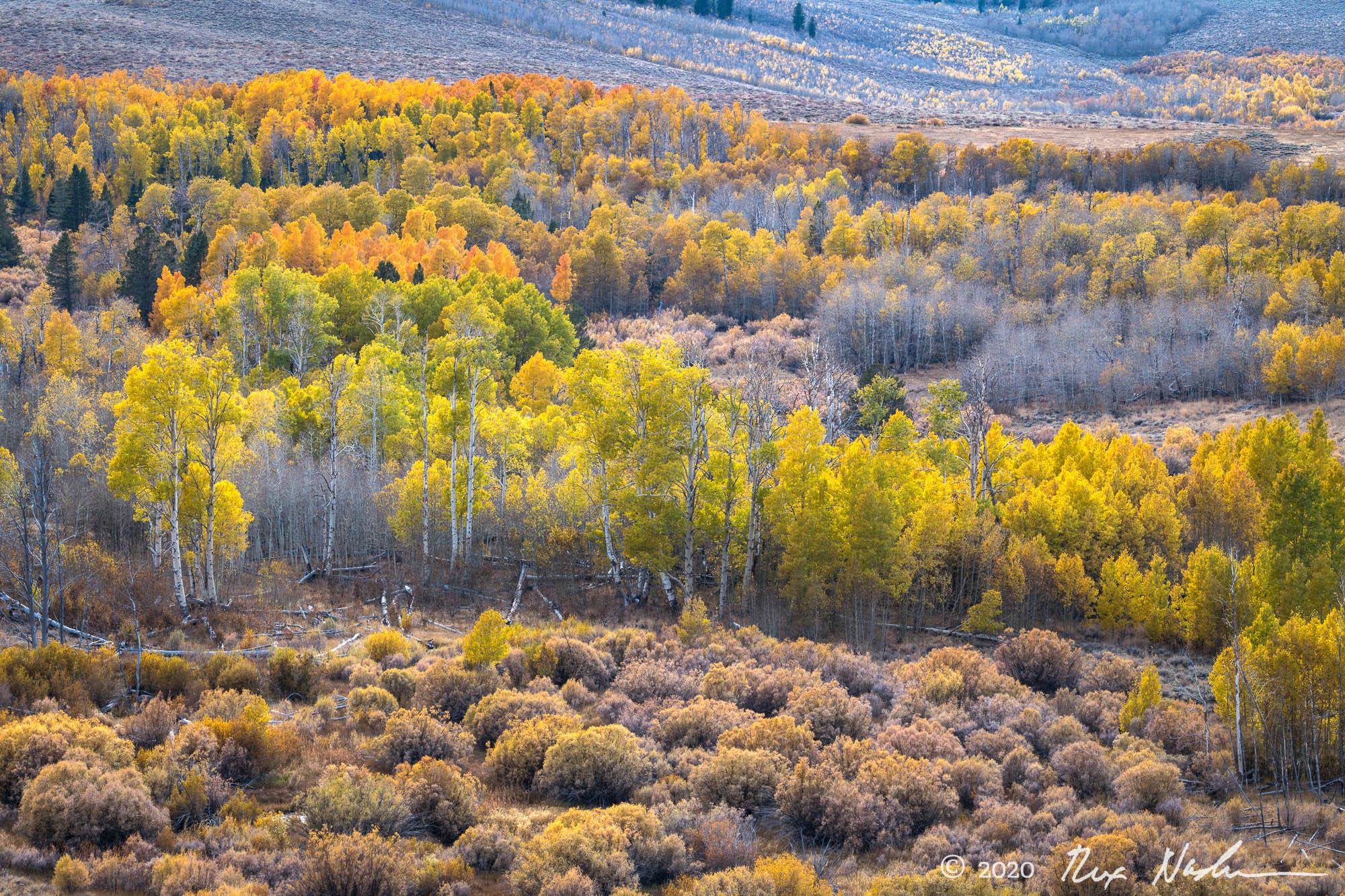 Western Valley - Eastern Sierra