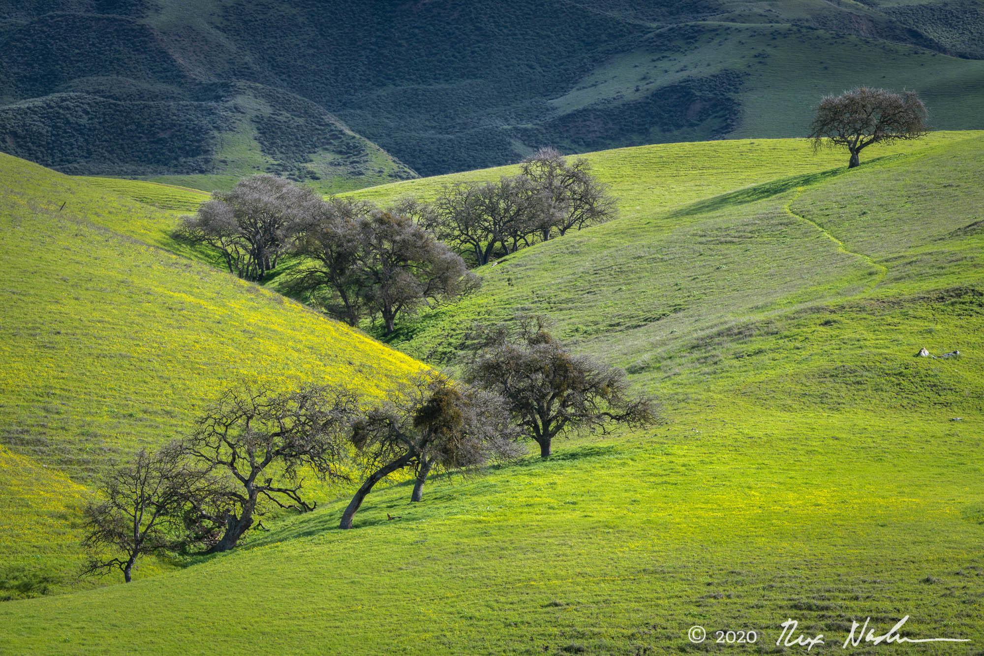 Pathway - San Benito County