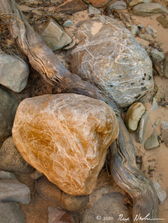 Roots with Striated Rocks